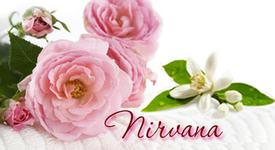 Nirvana Synergy -  5 ml., 10 ml. and Roll-On Sizes