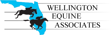 logo_wea_transparent.png