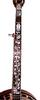 Tyler Mountain TM-1000 Five String Banjo with Resonator