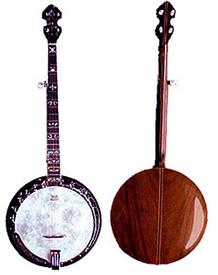 Tyler Mountain TM-800 Five String Banjo with Resonator