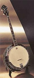 Tyler Mountain TMT-80 Tenor Banjo with Resonator