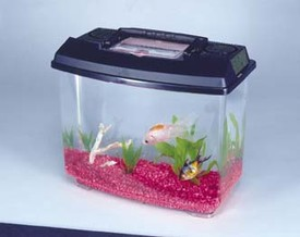 NEW WORLD HABITAT PLASTIC AQUARIUMS - SMALL (1-1/4 GALLONS)