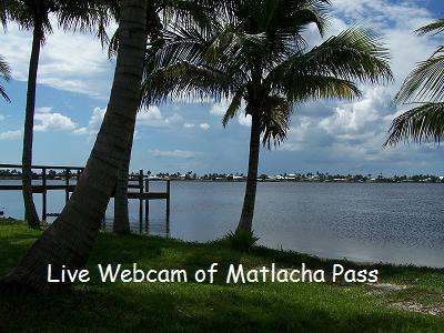 Live Webcam.jpg