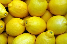 Lemon-Steam Distilled-(Citrus limonum)